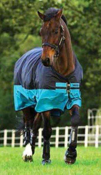 Horseware Amigo Mio Turnout lite black turquoise Weidedecke Regendecke