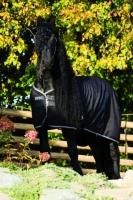 Horseware Rambo Stalldecke Stable Rug 200 g black