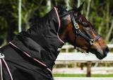 Horseware Rambo Optimo Halsteil ohne Füllung black-orange