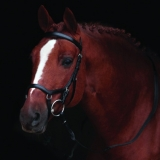 Horseware Rambo Micklem Competition Bridle havana