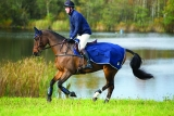 Horseware Rambo Waterproof Competition Sheet navy