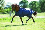 Horseware Amigo Turnout Hero 6 lite Excalibur green Regendecke